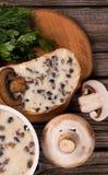 Queijo processado dos cogumelos Imagem de Stock Royalty Free