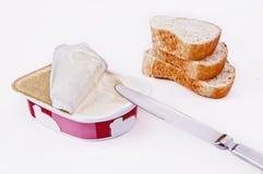 Queijo processado no prato plástico Fotografia de Stock Royalty Free