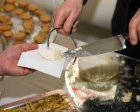 Queijo servido com estilo italiano Imagens de Stock Royalty Free