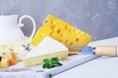 Queijos e leite em uma placa idosa clara Vista rústica Close-up Imagens de Stock