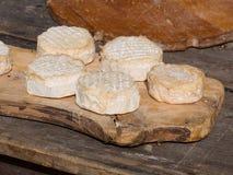 Queijos naturais da montanha com o molde na casca na placa de madeira Imagens de Stock