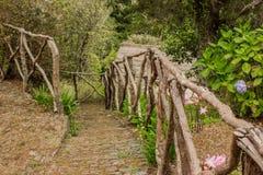 Queimadas - case al levada Foresta tropicale nelle montagne sull'isola del Madera Fotografie Stock