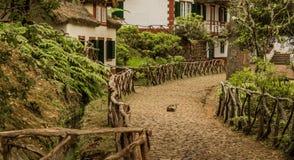 Queimadas - case al levada Foresta tropicale nelle montagne sull'isola del Madera Fotografia Stock Libera da Diritti