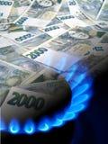 Queimador do dinheiro e de gás imagem de stock