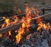 queimadura Imagens de Stock Royalty Free