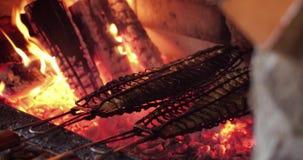 Queimadura bonita da lenha no fogão ardente de madeira video estoque