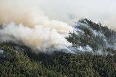 Queimadura da montanha no incêndio florestal de Califórnia Imagens de Stock