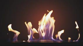 Queimadura de Biofireplace no gás do álcool etílico Tecnologias alternativas ecológicas espertas modernas Design de interiores de video estoque