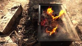 Queimadura do fogo da madeira e do carvão video estoque