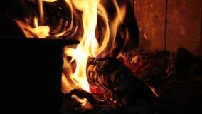 Queimadura do fogo da madeira e do carvão filme