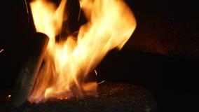 A queimadura do fogo da pelota com serragem do abeto vermelho na entrega espalha bio páletes de madeira à caldeira moderna indust video estoque