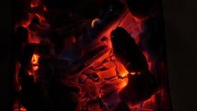 Queimaduras encarnados do carvão vegetal com fogo brilhante na obscuridade Close-up os carvões vermelhos queimam-se na grade na n video estoque