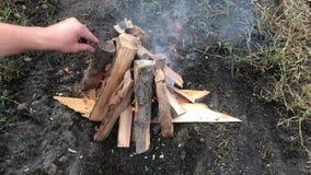Queimaduras pequenas de um fogo em um piquenique na floresta video estoque
