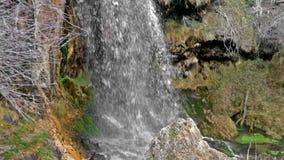 Quelle des Flusses Cuervo stock video footage