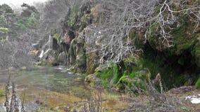 Quelle des Flusses Cuervo Cuenca stock footage