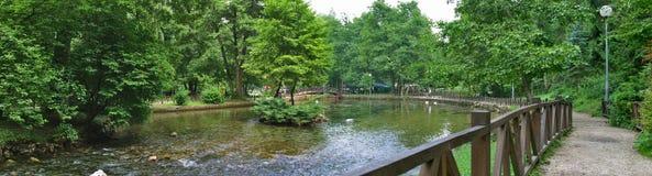 Quelle von Fluss Bosna stockbilder