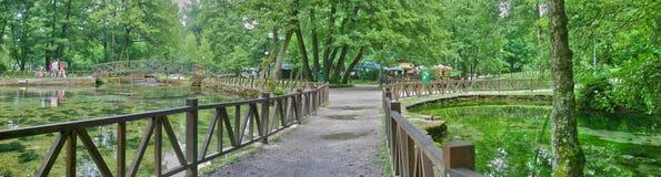 Quelle von Fluss Bosna lizenzfreie stockfotos