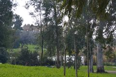Quellen des Yarkon-Flusses Stockbild