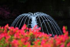 Quellenwasser Lizenzfreie Stockfotografie