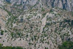 Quelques arbres en montagnes images libres de droits