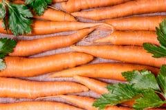 Quelques carottes Images stock