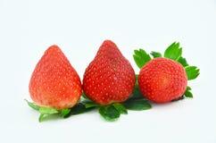 Quelques fraises à l'arrière-plan blanc Photo libre de droits