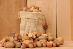 Quelques genres de noix Photos stock