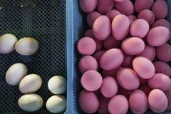 Quelques oeufs blancs et beaucoup d'oeufs roses Ils se situent dans les paniers bleus Personne n'a besoin des oeufs de pâques images libres de droits