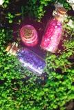 Quelques petites bouteilles en verre avec la forêt de rêves au printemps Photo stock