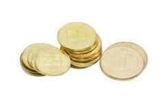Quelques pièces de monnaie du hryvnia ukrainien sur un fond clair Photos libres de droits