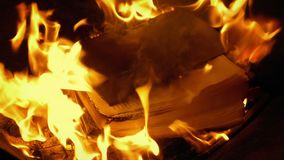 Quema de libro en el fuego almacen de metraje de vídeo