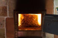 Quema en las pelotillas del horno del pino Imágenes de archivo libres de regalías
