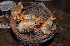 Quemadura del camarón fotos de archivo libres de regalías