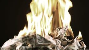Quemando cincuenta dólares los billetes de banco giran metrajes