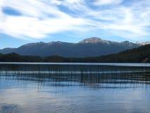Queni van het meer in Patagonië Stock Foto