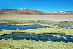 Quepiaco lagoon, Chile Stock Photos