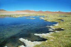 Quepiaco laguna, Chile zdjęcia royalty free