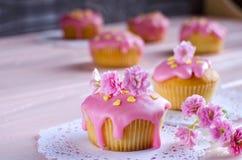 Queque com geada cor-de-rosa e o close up bonito da decoração Fotografia de Stock Royalty Free