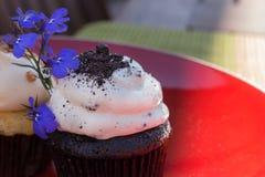 Queque da cookie do chocolate Foto de Stock Royalty Free