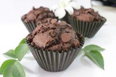 Queque das brownies. Fotografia de Stock Royalty Free