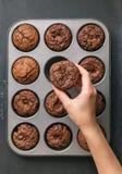 Queque delicioso dos pedaços de chocolate Fotografia de Stock