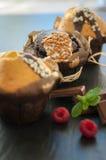 Queque três com framboesas e chocolate Fotografia de Stock