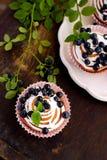 Queques caseiros com crosta de gelo e mirtilos Imagem de Stock