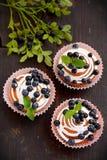 Queques caseiros com crosta de gelo e mirtilos Foto de Stock Royalty Free