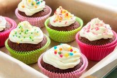 Queques coloridos do chocolate Fotografia de Stock Royalty Free