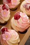 Queques cor-de-rosa da baunilha e da framboesa Fotos de Stock
