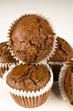 Queques de Chbocolate Fotografia de Stock Royalty Free