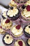 Queques deliciosos com buttercream e frutos Fotografia de Stock
