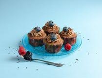 Queques do chocolate ajustados na placa Foto de Stock