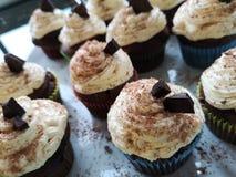 Queques do chocolate com geada foto de stock